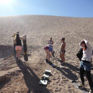 San Pedro de Atacama Snowboarding a Sand Dune