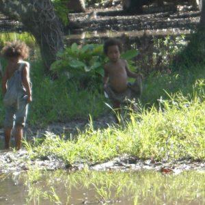 Kids having a blast in the water.