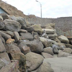 Máncora to Guayaqiul: Good Riddance Peru...