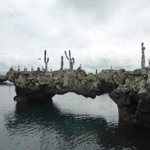 Isla Isabela, Galapagos Los Tunels Tour