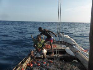 Zanzibar, Tanzania, net fishingZanzibar, Tanzania, net fishing