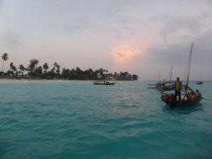 Zanzibar, Tanzania, net fishing