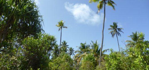 Michamvi Zanzibar: Little Ms Tanzania Pageant