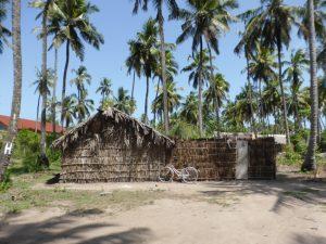 Michamvi Zanzibar: Accidentally Smooth