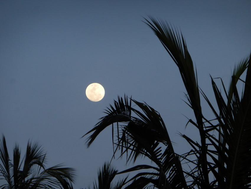 A beautiful Christmas moon.