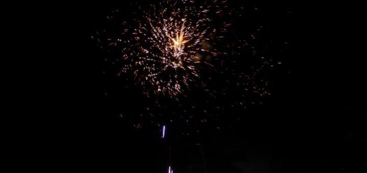 Moshi: Happy New Year!