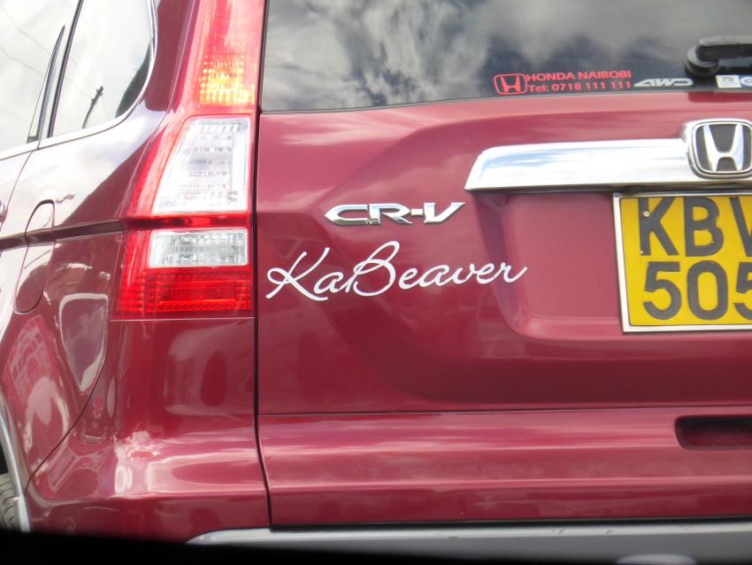 Ka-Beaver! Ka-Boom!