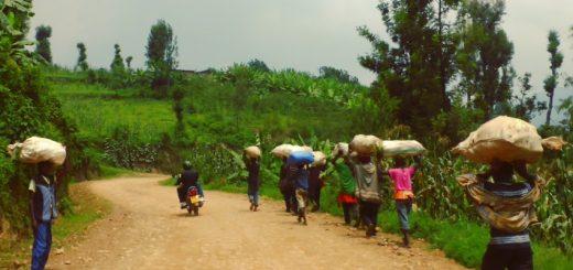 Kibuye to Gisenye: Motorcycling Rwanda