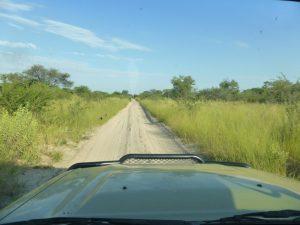 The fast drive to the Okavango Delta.