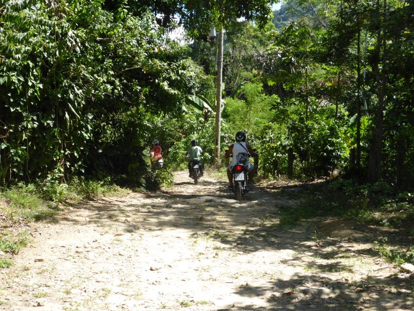 Riding Bikes to Ayahuasca