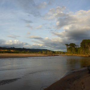 Rurrenabaque: Termites Taste Like Mint – Surviving the Amazon