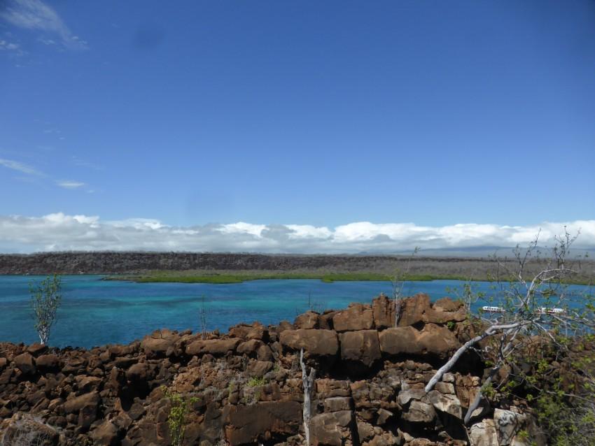Isla Baltra, Galápagos Islands, Ecuador