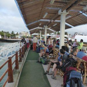 Isla Isabella, Galapagos: Snorkelling, Boobies, Crabs, Penguins and Iguanas
