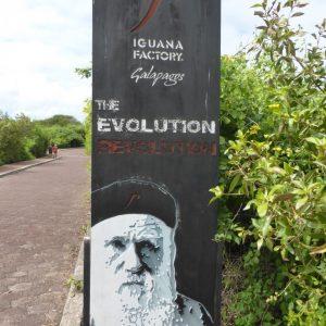 Isla Isabella to Isla Santa Cruz: Not Cruz-ing with Pleasure