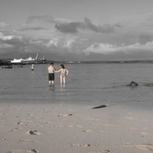 Isla Santa Cruz: Casually Goodbying Gorgeous Galapagos