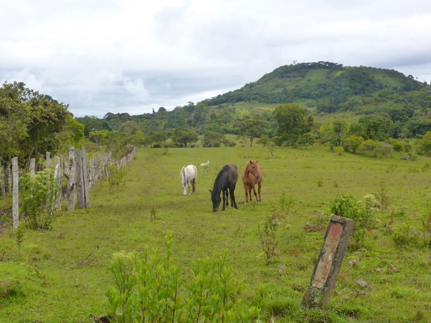 San Agustín, Colombia