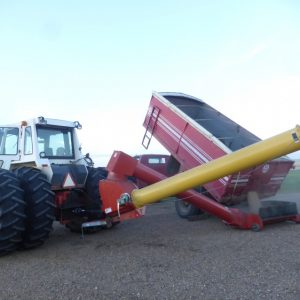 Auger for moving the harvested crop.