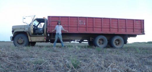 Big Beaver: Harvest Time