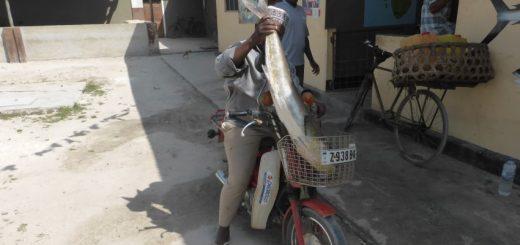 Nungwi Zanzibar: Mr. HQP