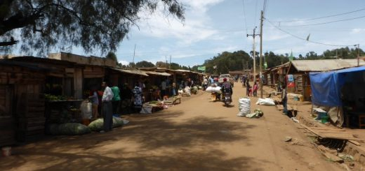 Mbulu: Sharing Tobacco and Counting Wives