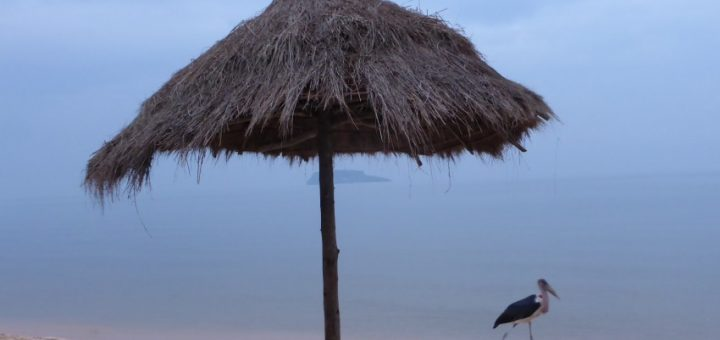 Bukoba: Beachside on Lake Victoria