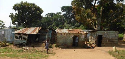 Kalangala, Ssese Islands to Masaka: The Perks and Disadvantages of Caucasian-ing