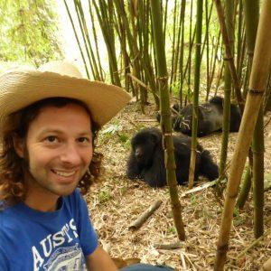 Meeting a Silverback Gorilla Family, Rwanda
