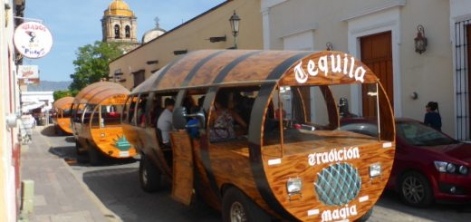 Tequila Distillery Tour in Tequila, Mexico