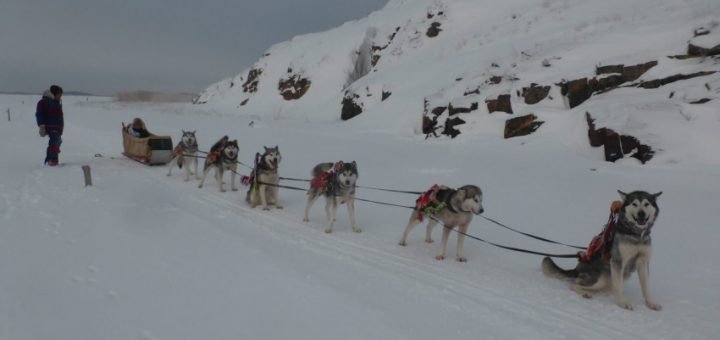 Dog Sledding in Fort Chipewyan, Alberta, Canada.