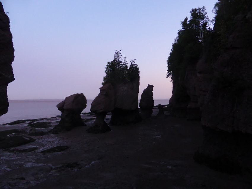 A Fun-Day at the Bay of Fundy: Hopewell Rocks!