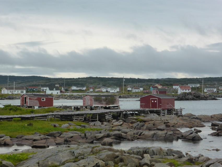Northern Newfoundland and Fogo Island