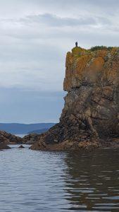 Cod Fishing in Newfoundland: Pollards Point