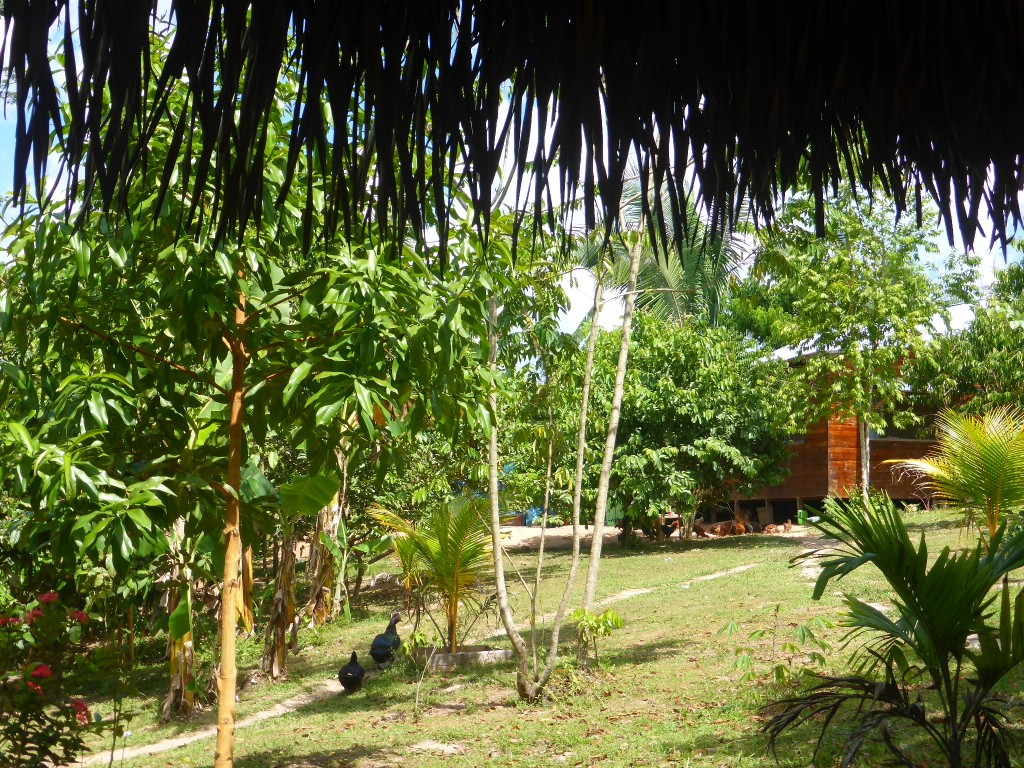The Peruvian Ayahuasca Retreat - 12 Days of Healing and Hallucinating