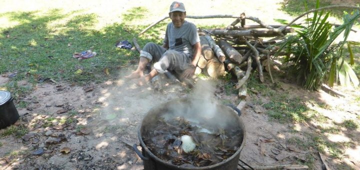 The Peruvian Ayahuasca Retreat - 12 Days of Healing and Hallucination